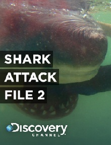Shark Attack File 1: Part 2